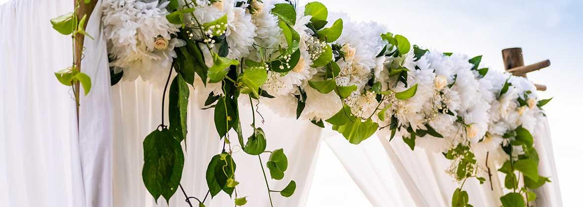 Expatriate Wedding Planner